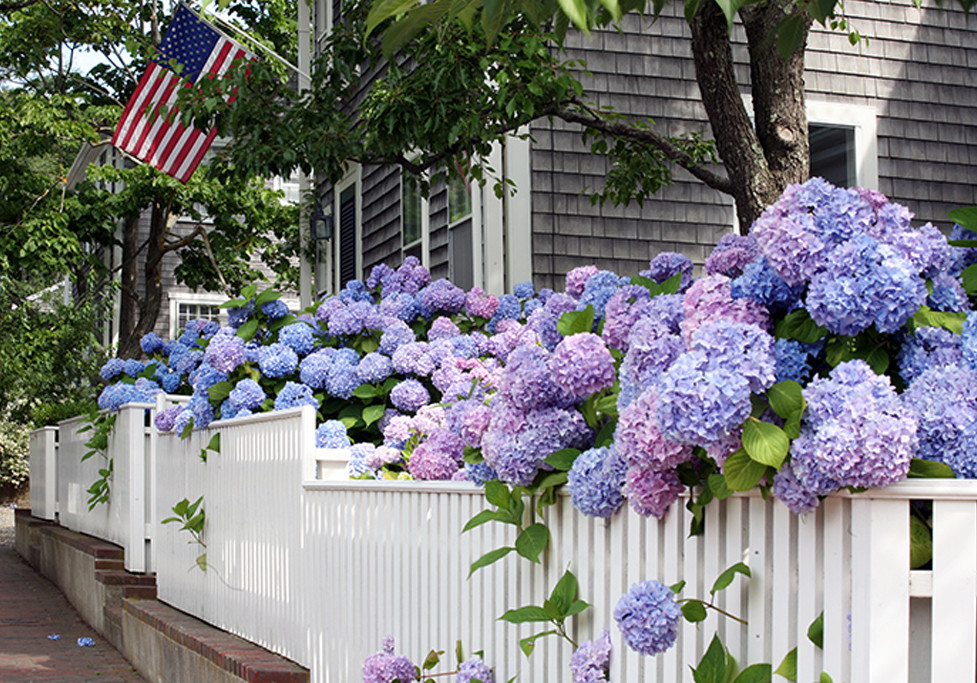 weekend travel series: nantucket