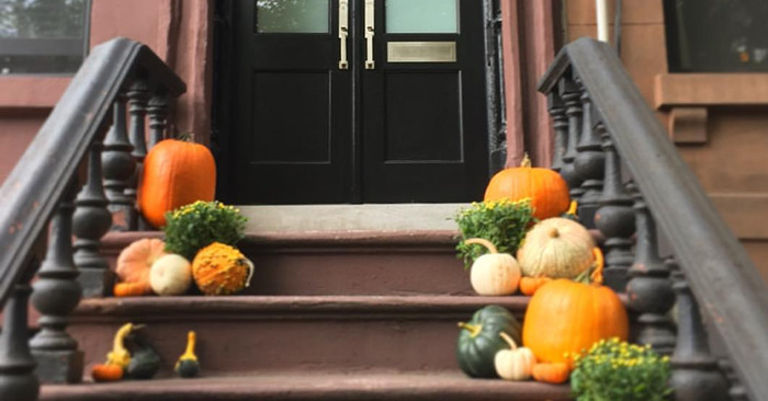 gwen & lindsey's autumn decor favorites