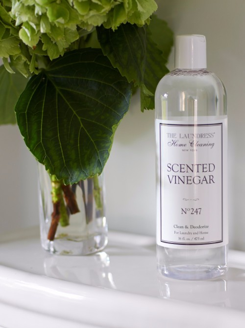 CMSPage_21 Ways to Use Scented Vinegar_ONE_SIZE_IMAGE_01