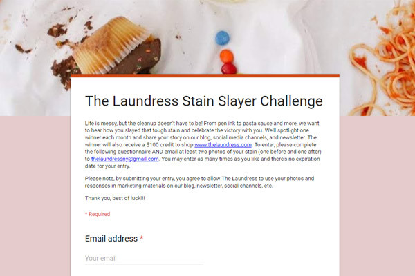 CMSPage The Laundress Stain Slayer Challenge ONE SIZE IMAGE 01