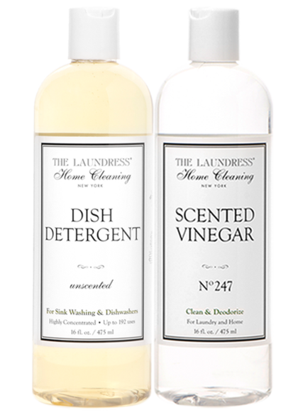 Scented Vinegar and Dish Detergent Duo